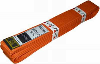 ceinture orange verte judo,passage ceinture orange kyokushinkai,ceinture  orange fluo 3153e89961b